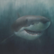 Studio Visit: Natalie Arnoldi's Jaw Dropping Shark Paintings