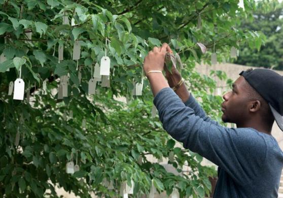 Yoko Ono Wish Tree, Miami Art Week